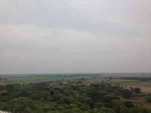 View from Dhauli Near Bhubaneshwar