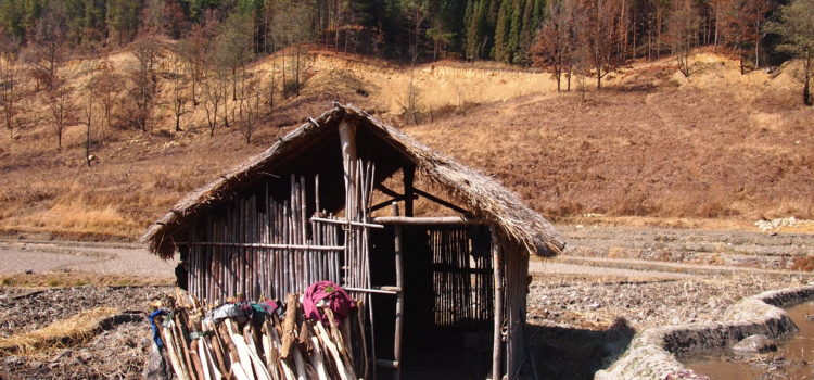 Nagaland: The last frontier