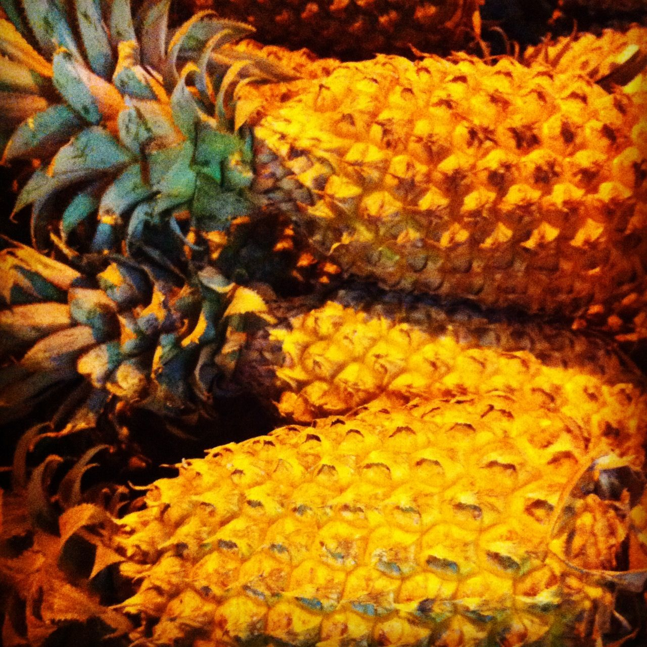 Brilliant Pineapples