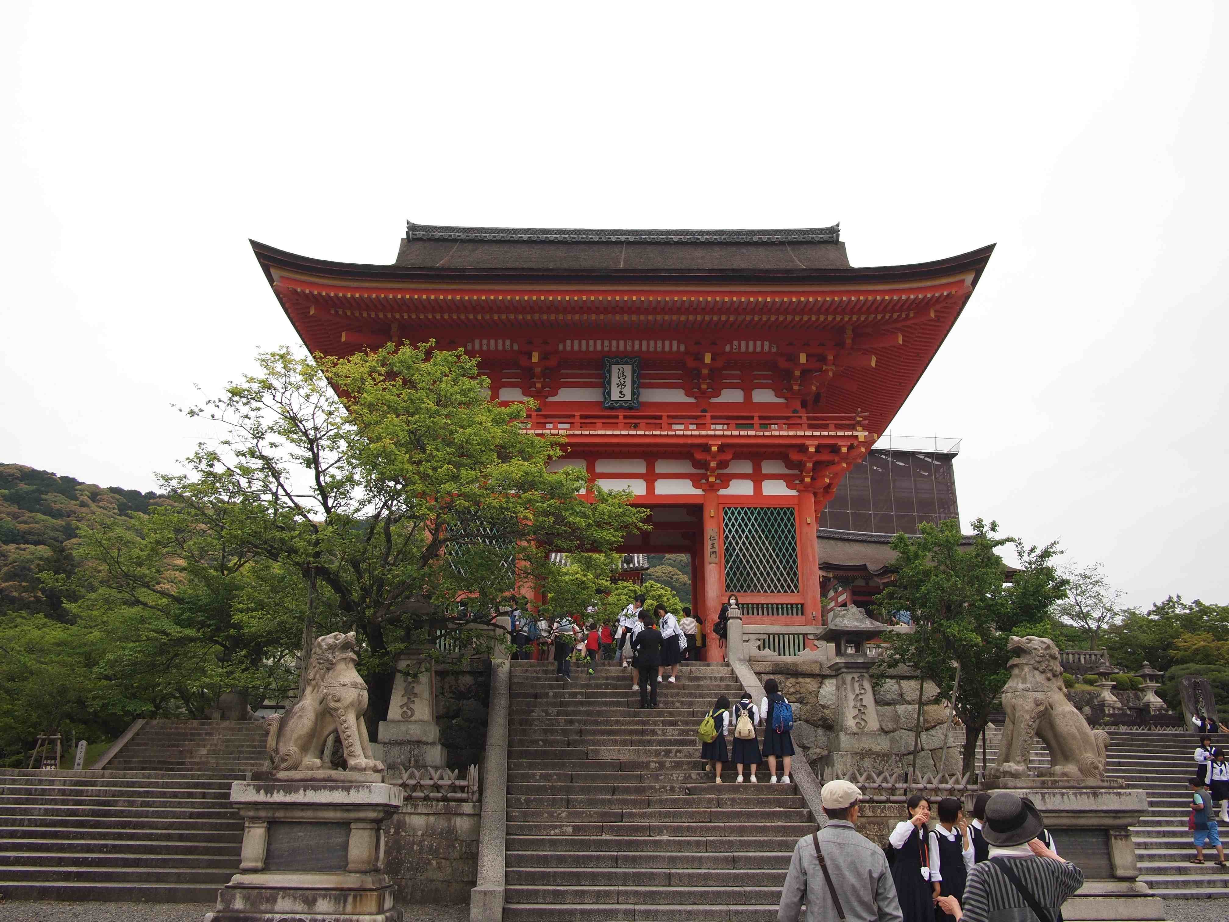Japan : Handy Hints and Travel Tips