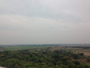 View from Dhauli Near Bhubaneshwar