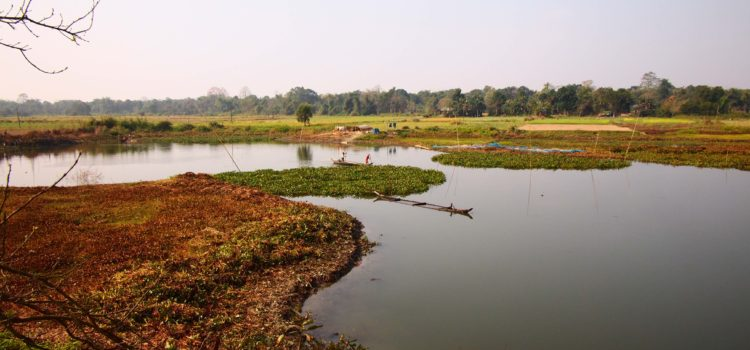 Is it too late to save Majuli Island?
